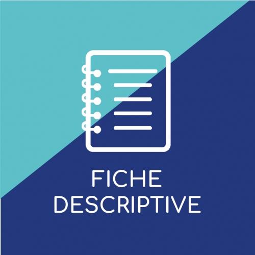 vignette_descriptive